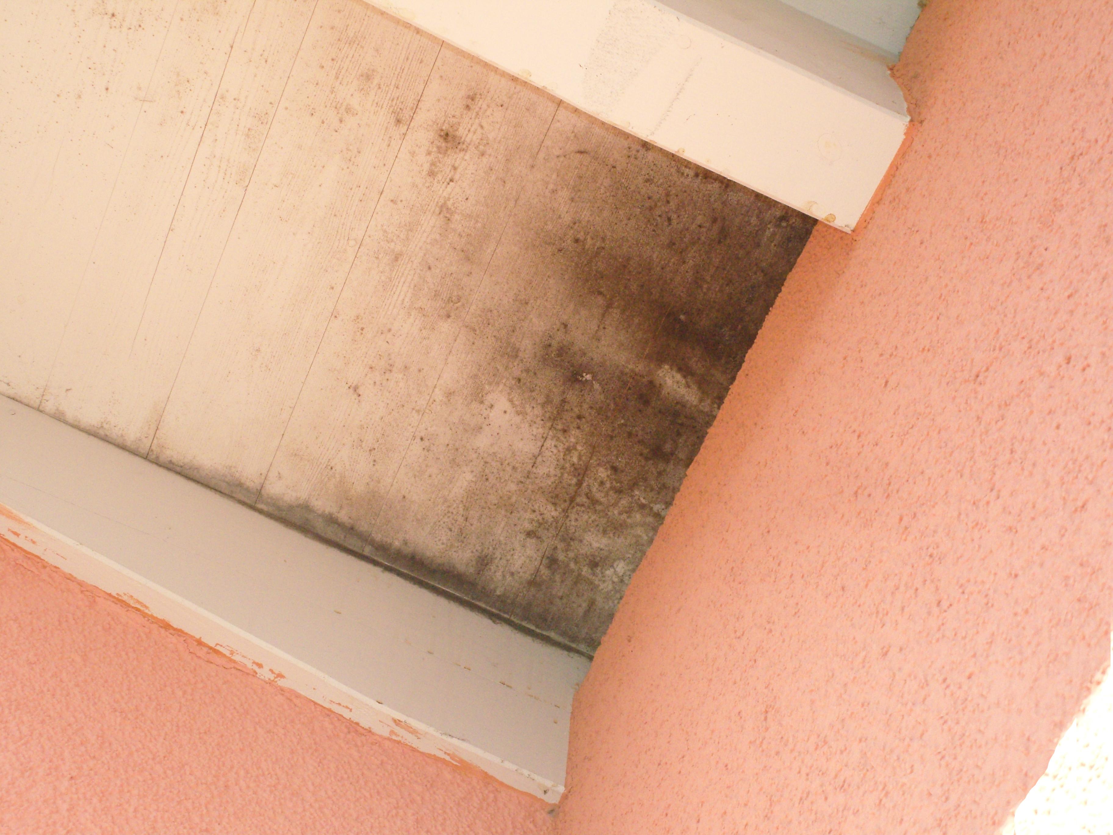 Dachüberstand wegen undichter Gebäudehülle